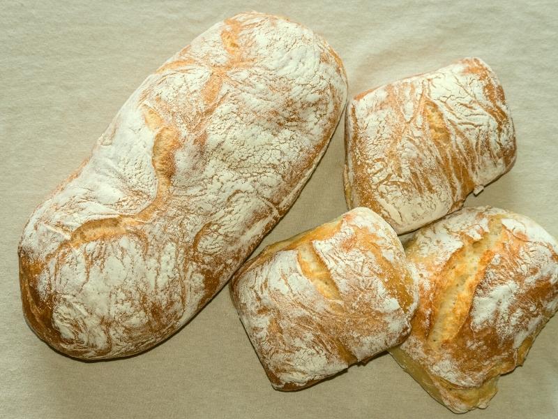 ciabatta-brot-brötchen