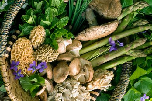 Pilzsalat Zutaten Rezept
