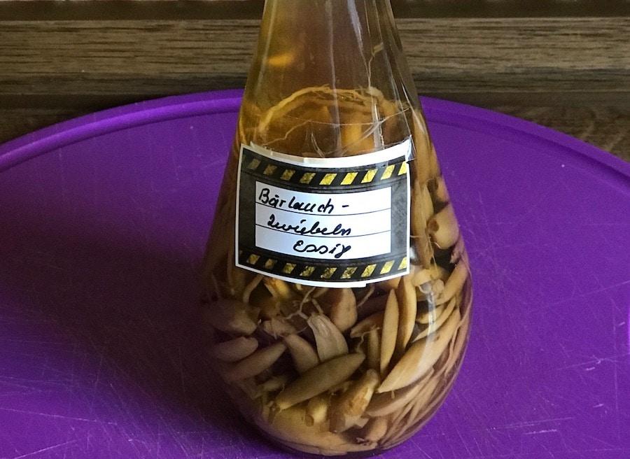 Bärlauchzwiebeln in Essig in der Flasche