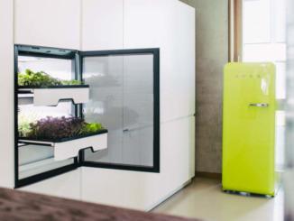 plantcube-agrilution