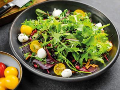 salat agrilution Plantcube Gericht