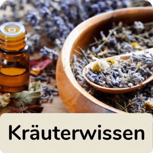 Kräuterwissen-icon